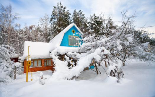 Ką veikti sodyboje žiemą